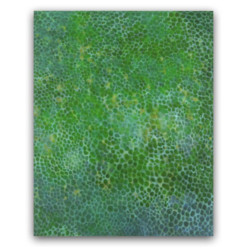 trans-green@wp